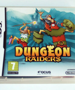 Dungeon Raiders NDS